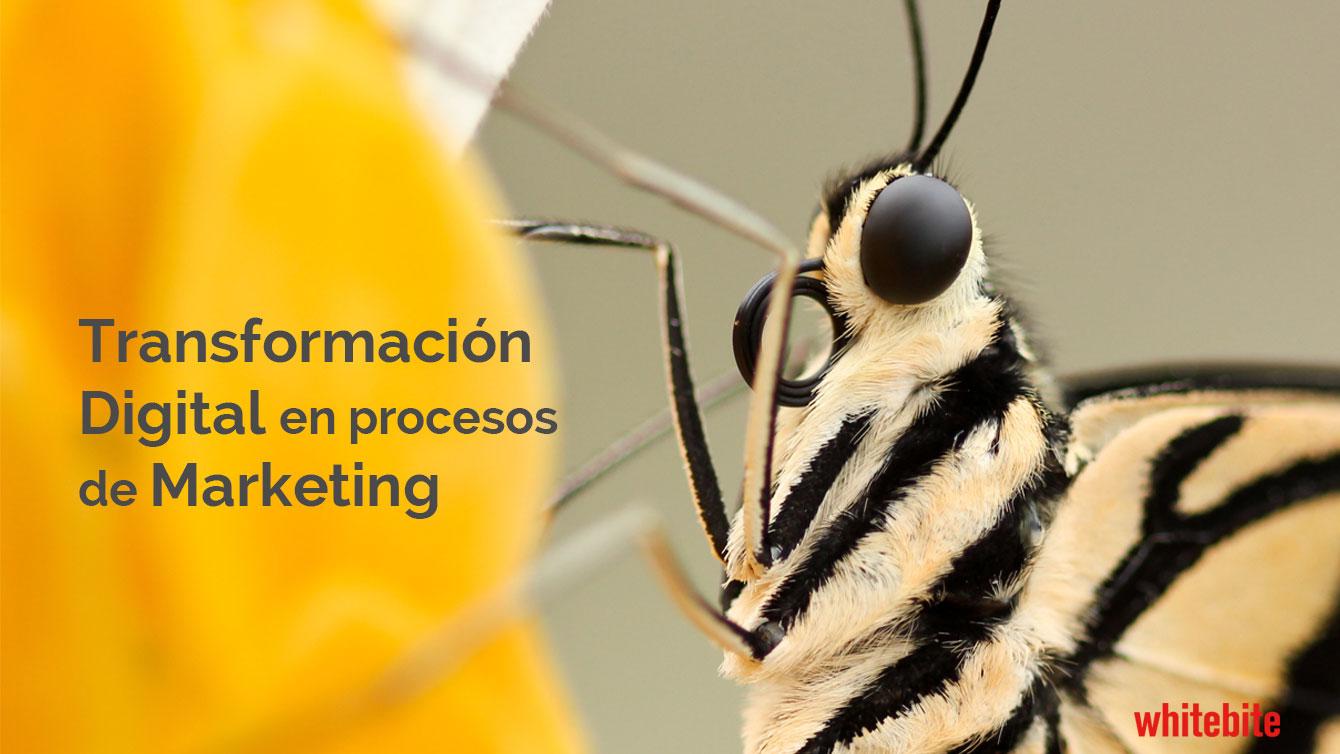La-transformacion-digital-en-proceso-de-marketing