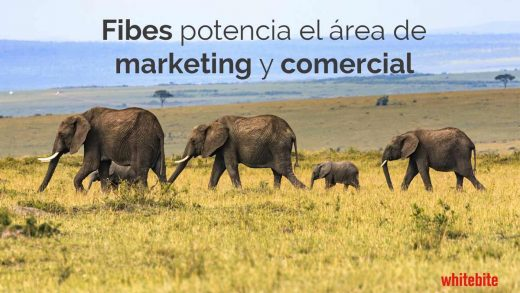 FIBES, Pionero en Inbound Marketing